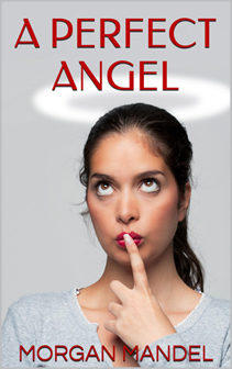 336h perfect angel cover